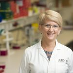Professor Kate Loveland from the Testis Development and Male Germ Cell Biology Research Group at Hudson Institute