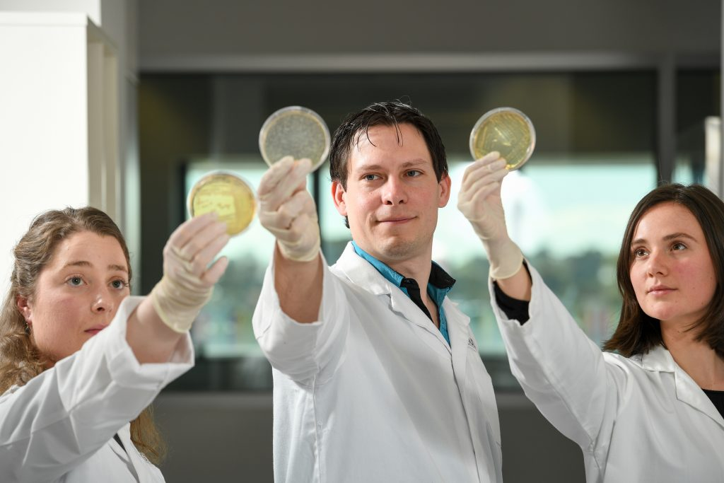 Sam Forster and Gemma D'Adamo and Tam conducting UTI research holding up petri dishes at Hudson Institute