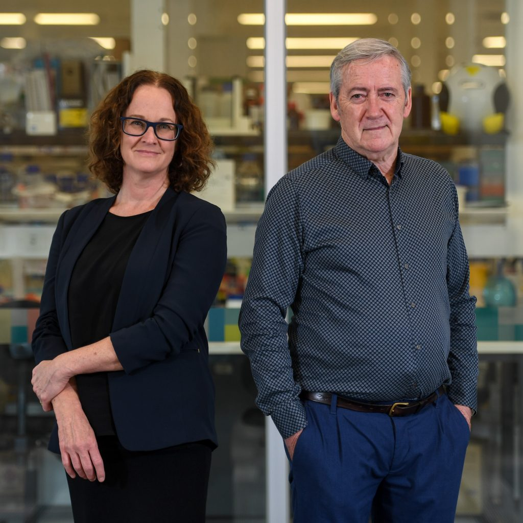 Professor Elizabeth Hartland, Director and CEO of Hudson Institute of Medical Research and Professor Paul Hertzog Associate Director of Hudson Institute of Medical Research in the TRF building, Clayton.